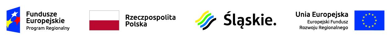 Wdrożenie nowoczesnej technologii przetwarzania surowców plastycznych w celu poszerzenia i unowocześnienia oferty firmy